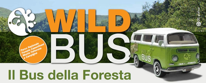 Il Bus della Foresta della Lama