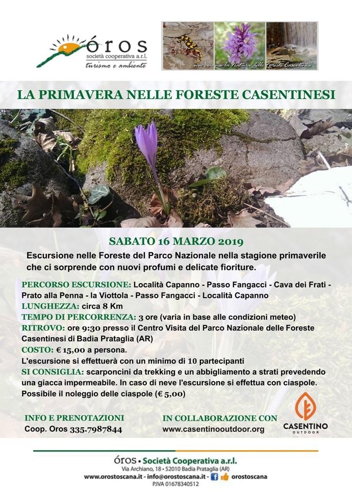 Primavera nel Parco Nazionale delle Foreste Casentinesi